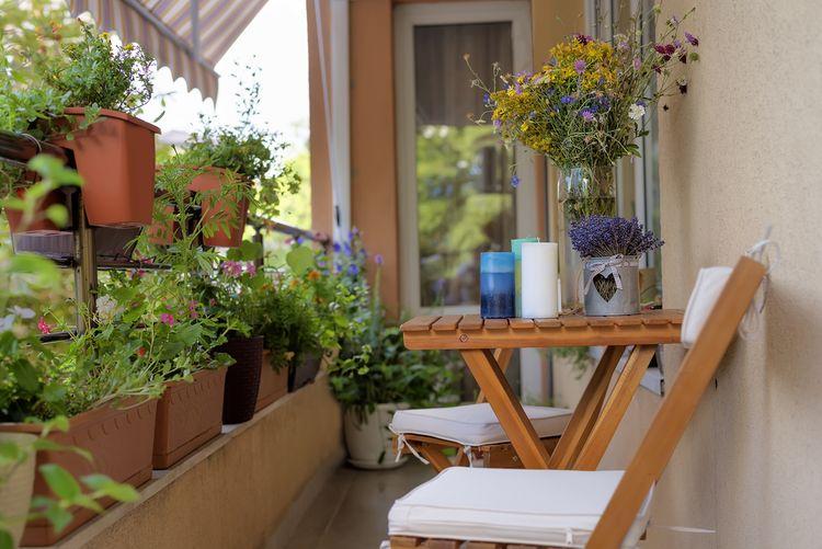 Kvety na balkóne