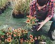Vhodné oblečenie do záhrady – gumené čižmy, montérky, rukavice či klobúk