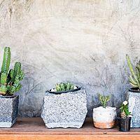 Betónové kvetináče – hodia sa do bytu i do záhrady