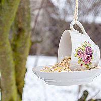 Originálne vtáčie krmidlá, ktoré si urobíte aj sami