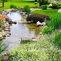 Ako zazimovať záhradné jazierko? Príprava jazierka na zimu