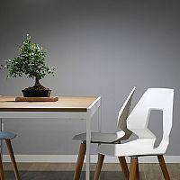 Štýlové plastové stoličky sa hodia nielen do kuchyne