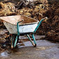 Ako hnojiť na jeseň záhradu a trávnik