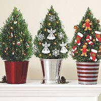 Ako sa starať o živý vianočný stromček v kvetináči?