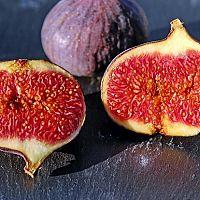 Ako zasadiť figu a ako sa o ňu starať?