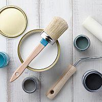 Antialergická interiérová farba - prevencia vzniku plesní v byte