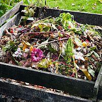 Ako urýchliť domáce kompostovanie? Bactisan ako urýchlovač má dobré skúsenosti