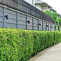 Najlacnejšie betónové ploty z Poľska nie sú kvalitné. Rozpadnú sa za pár rokov