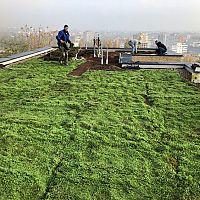 Juraj Pekár: Zelená strecha robí majiteľovi radosť pri každom pohľade