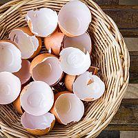 Ako využiť škrupiny z vajec? V záhrade do kompostu a na kvety ako hnojivo