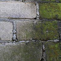 Ako odstrániť mach z betónu a zámkovej dlažby? Pomôže postrek Machožrút