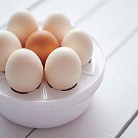 Variče vajec – recenzie, test, návod na použitie. Obľúbené sú značky Delimano a Sencor