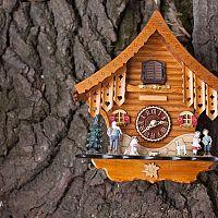 Kukučkové hodiny majú stále svoje čaro. Poradíme, ako si ich vybrať