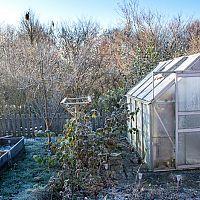 Ako zazimovať skleník – dezinfekcia zeminy v skleníku a príprava na jar