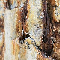 Ako odstrániť hrdzu z betónu, zámkovej dlažby a betónového plota