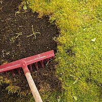Mach namiesto trávy? Pomôže postrek, hrable na mach v trávniku i zelená skalica