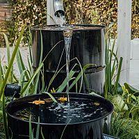 Dažďové záhrady v meste i na vidieku – ako udržať vodu v záhrade, aké rastliny sú vhodné