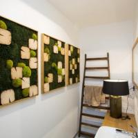 Pavol Gúber z MossDesign: S machovou stenou si prinesiete kúsok prírody do interiéru