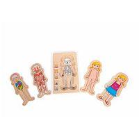 Drevená hračka Legler Anatomy Boy