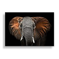 Obraz Styler Canvas Silver Uno Elephant, 85×113 cm