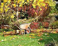 Ako pripraviť záhradu na zimu?