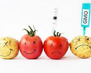 Čo je to diagnostika potravín a ako si vybrať ten najlepší prístroj?