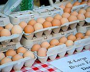 Predaj hydiny, mäsa, medu, ovocia a zeleniny, vajec z dvora – podmienky, zákon, povolenie