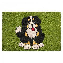 BO-MA Trading Kokosová rohožka Pes čierný 358 zelená, 40 x 60 cm