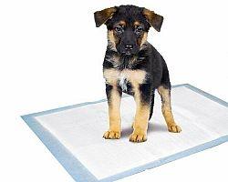 Karlie Tréningová podložka pre šteňatá 60 x 40 cm, sada 10 ks  , 60 x 40 cm