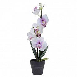 Orchidea v kvetináči biela, 38 cm