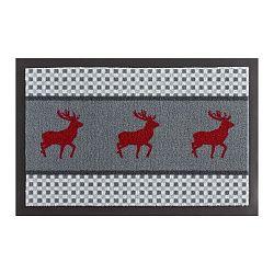 Rohožka Zala Living Hirsch Deer,×60 cm