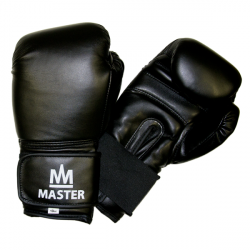 Boxovacie rukavice MASTER TG10