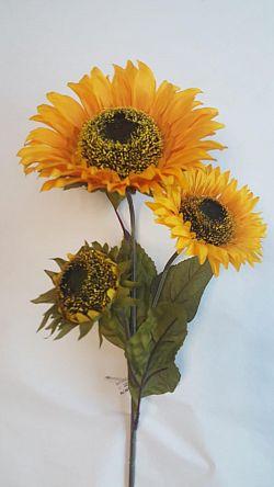Florasystém Slnečnica 90cm 1500189