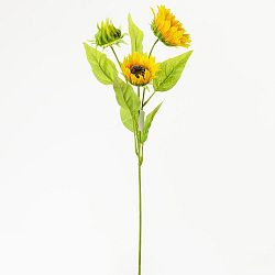 Florasystém Slnečnica kus 67cm 1500271