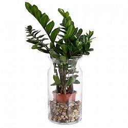 DUIF Sklenená váza BOSE 29,5cm