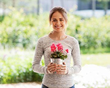 Cyklamén – pestovanie v byte aj vonku v záhrade