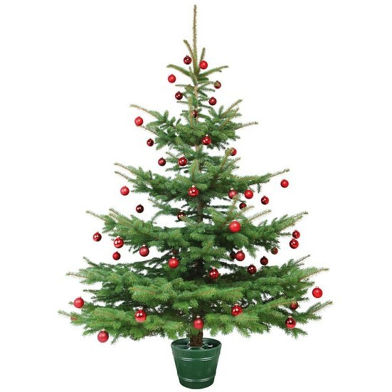 Stojan na vianočný stromček Planet 1 zelená